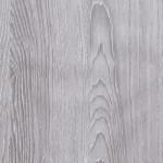 Dub šedý (308)