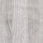 Dub stříbrný (352)